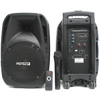 Мобильная активная акустическая система 120W BIGvoice PORTABLE10
