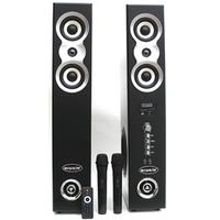 Активный комплект домашней HI-FI акустики HI-END 300
