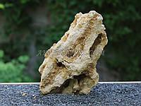 Песчаник 8 (1.08kg)
