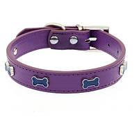 Кожаный ошейник для собаки с заклепками в виде косточек (фиолетовый, желтый) Размер М, фото 1