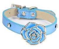 Элегантный кожаный ошейник для собак с яркой розой (Цвет голубой). Размер S.