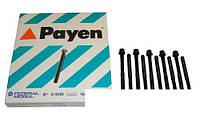 Болты ГБЦ (комплект) Payen (США) Chery Amulet