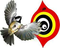 Защита вашего участка от птиц — приобрести прибор для отпугивания птиц
