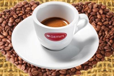 Обжарка кофе Gemini
