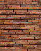 Кирпич ручной формовки Wienerberger Terca Eco-brick Metropolis Aula Rood
