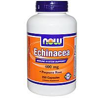Эхинацея, Echinacea, Now Foods, 400 мг, 250 капсул