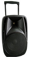 Портативная акустика Soundking SKA10T