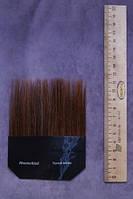 Кисти из ушного волоса (лампензель)
