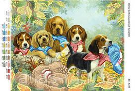 """Схема для частичной вышивки бисером """"Собаки бейсболисты"""""""