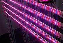 Светодиодный фитосветильник для растений T5/Т8 14W  288LED 120 см. , фото 2