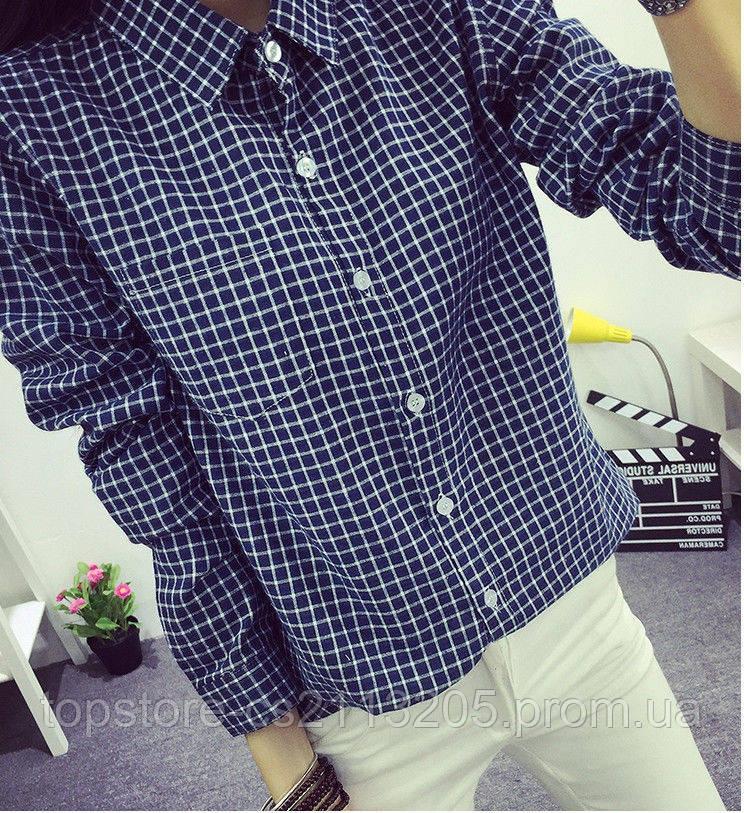 Купить блузки запорожье