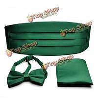 PenSee мужские галстуки формальный твердый предварительно привязал галстук и карманный квадрат & камербанд набор