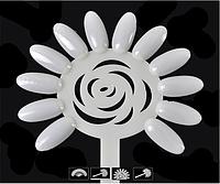 Дисплей-ромашка для лаков 12 цветов