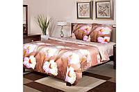 Комплект постельного белья Луиза евро размер