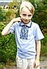 Вишиванка для хлопчика Подільська сіра на сірому