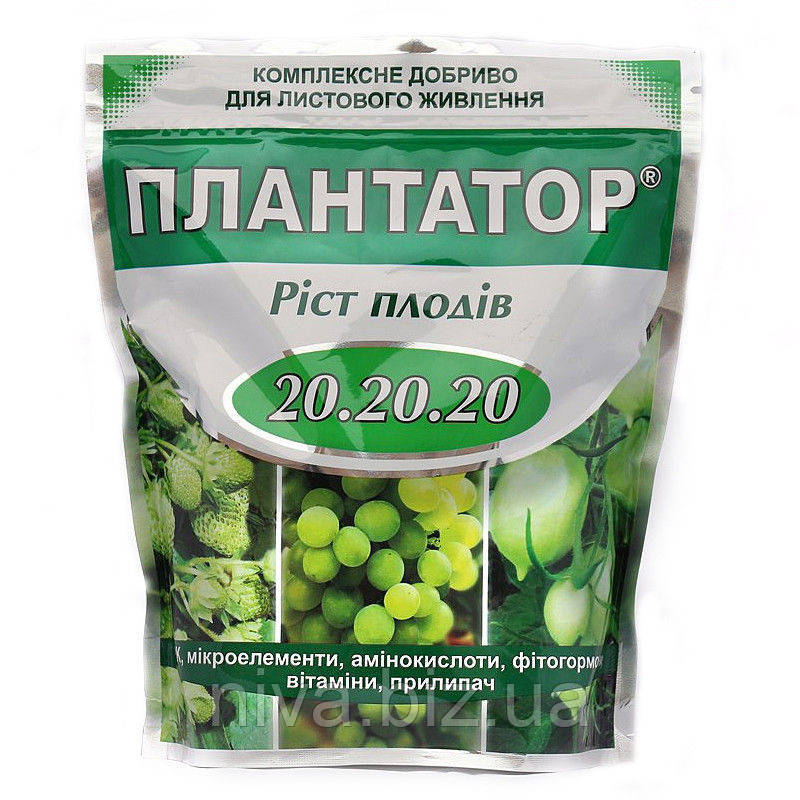 Плантатор Ріст плодів NPK 20.20.20 1 кг