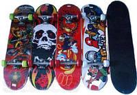 Скейтборд SHARK  80*20