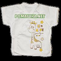 Распашонка для новорожденного р. 56 короткий рукав ткань КУЛИР 100% тонкий хлопок ТМ Алекс 3171 Бежевый