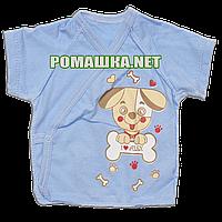 Распашонка для новорожденного р. 56 короткий рукав ткань КУЛИР 100% тонкий хлопок ТМ Алекс 3171 Голубой