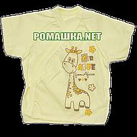 Распашонка для новорожденного р. 56 короткий рукав ткань КУЛИР 100% тонкий хлопок ТМ Алекс 3171 Желтый