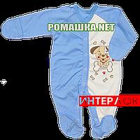Человечек для новорожденного р. 62 демисезонный ткань ИНТЕРЛОК 100% хлопок ТМ Алекс 3039 Голубой1