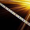 Светодиодная лента Standart SMD 2835-60 IP20 Monocolor