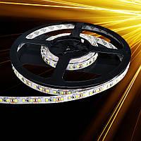 Светодиодная лента Standart SMD 2835-120 IP20 Monocolor