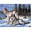 "Картина для рисования камнями Diamond painting ""Волки зимой"""