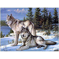 "Картина для рисования камнями Diamond painting ""Волки зимой"", фото 1"