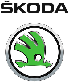 Накладки нержавейка Skoda