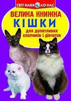 """Книга В4 """"Большая книга Кошки""""  Бао №2579"""