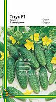 Семена огурца Титус  F1 (любительская упаковка)1гр. (~40шт.)