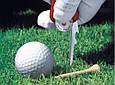 Швейцарський ніж Victorinox Golftool, фото 2