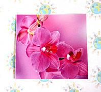 Наклейка на выключатель Орхидеи