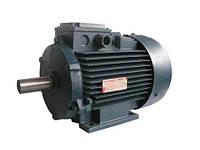 Асинхронные трехфазные электродвигатели переменного тока АД 112