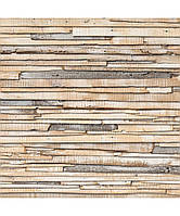"""Флизелиновые фотообои """"Выгоревшее на солнце дерево"""" 368х254 см  , фото 1"""