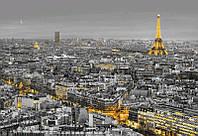 "Фотообои ""Огни Парижа"" 368х254 см  , фото 1"