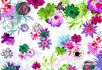 """Фотообои  """"Парижские цветы"""" 368х254 см  , фото 1"""
