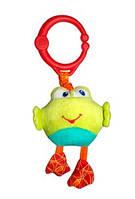 Подвижная игрушка из ткани Лягушка  Bright Starts, Лягушка (8808-1)