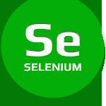 селен / selenium