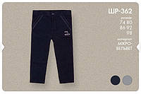 Вельветовые штаны для мальчика. ШР362