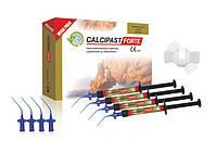 CALCIPAST Forte (MEGA PACK) набор 4x2,1г.