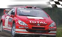 Моделист Автомобиль Пежо 307 WRC (1:43) (604310) (604310)