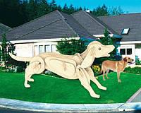 Собака (сборная модель) Мир деревянных игрушек (М011)
