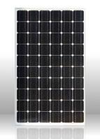 Солнечная батарея Perlight PLM-250M