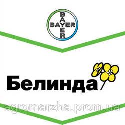 Семена рапса ярового сорт Белинда (Bayer)