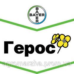 Семена рапса ярового сорт Герос (Bayer)