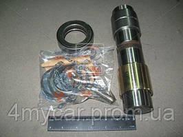 Р/к шкворня renault kerax,magnum,premium на сторону (производство C.E.I. ), код запчасти: 230012