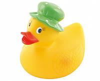 Игрушка для купания Canpol Babies Утка Пискун 2/990, утка в зеленой шляпе (2/990-3)