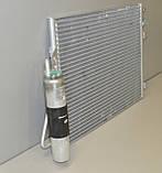 Радиатор охлаждения двигателя на Renault Kangoo 97->08 1.5dCi+1.2 16V+1.6 — Renault (Оригинал) - 8200757789, фото 2